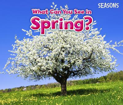 What Can You See In Spring?