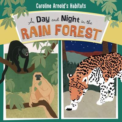 A Day and Night in the Amazon Rainforest