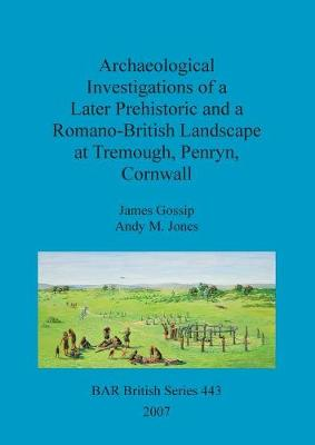 Archaeological Investigations of a Later Prehistoric and a Romano-British Landscape at Tremough, Penryn, Cornwall