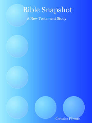 Bible Snapshot: A New Testament Study