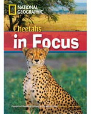 Cheetahs in Focus (Book with Multi-ROM): Footprint Reading Library 2200