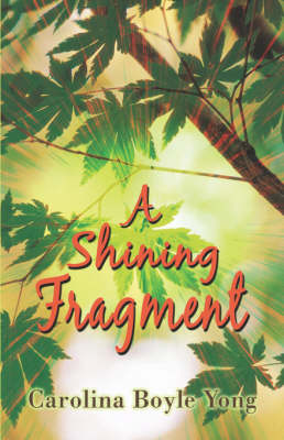 A Shining Fragment