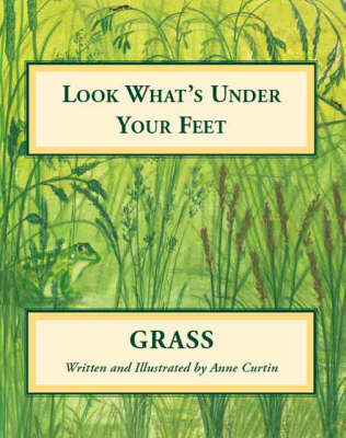 Look What's Under Your Feet: Grass