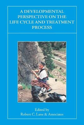 A Developmental Perspective on the Life Cycle and Treatment Process
