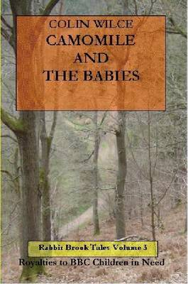 Camomile and the Babies (Rabbit Brook Tales Volume 3)