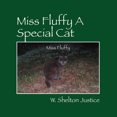 Miss Fluffy a Special Cat