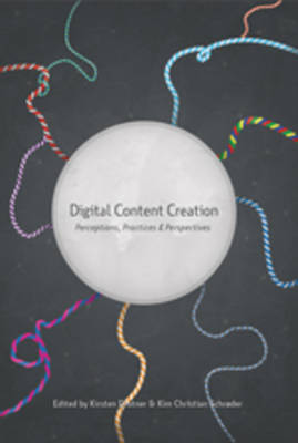 Digital Content Creation: Perceptions, Practices and Perspectives