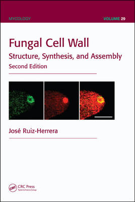 Fungal Cell Wall: Structure, Synthesis, and Assembly, Second Edition