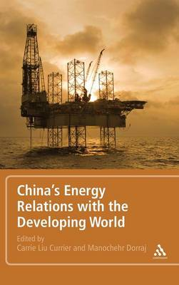 China's Energy Relations with the Developing World