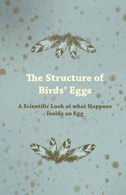 The Structure of Birds Eggs - A Scientific Look at What Happens Inside an Egg