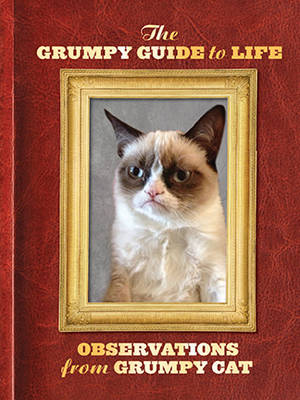 Grumpy Guide to Life : Observations from Grumpy Cat