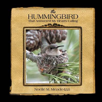 The Hummingbird That Answered My Heart's Calling