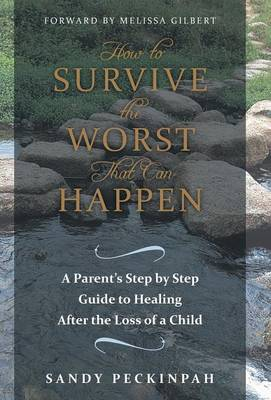 How to Survive the Worst That Can Happen: A Parent's Step by Step Guide to Healing After the Loss of a Child