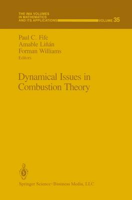 Dynamical Issues in Combustion Theory