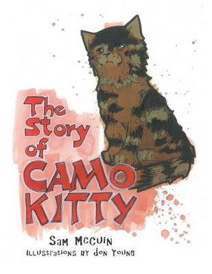 The Story of Camo Kitty