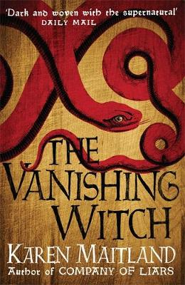 The Vanishing Witch: A dark historical tale of witchcraft and rebellion