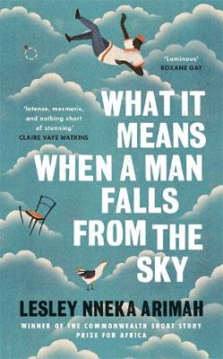 What It Means When A Man Falls From The Sky: The most acclaimed short story collection of the year