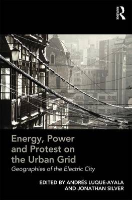 Energy, Power and Protest on the Urban Grid: Geographies of the Electric City