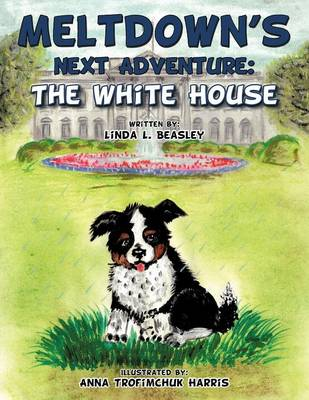 Meltdown's Next Adventure: The White House