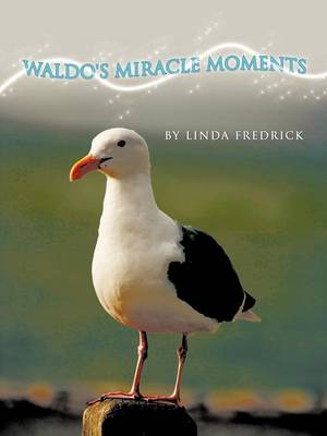 Waldo's Miracle Moments