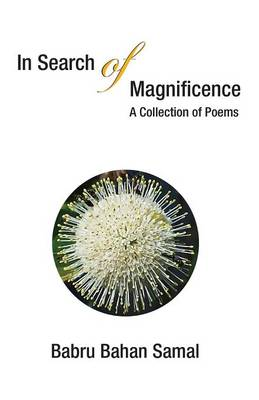 In Search of Magnificence: A Collection of Poems