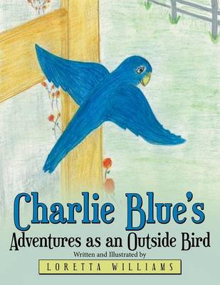 Charlie Blue's Adventures as an Outside Bird
