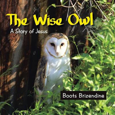 The Wise Owl: A Story of Jesus