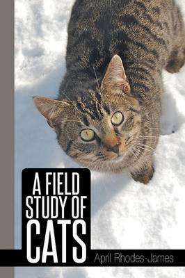 A Field Study of Cats
