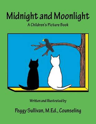 Midnight and Moonlight: A Children's Picture Book