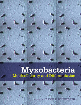 Myxobacteria: Multicellularity and Differentiation