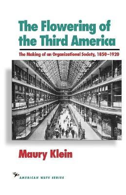 The Flowering of the Third America: The Making of an Organizational Society, 1850-1920