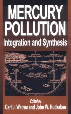 Mercury Pollution: Integration and Synthesis