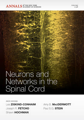 Neurons and Networks in the Spinal Cord
