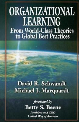 Organizational Learning: From World-Class Theories to Global Best Practicesa