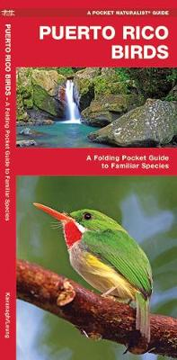 Puerto Rico Birds: A Folding Pocket Guide to Familiar Species