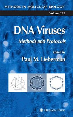 DNA Viruses: Methods and Protocols