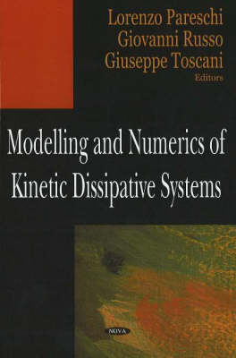 Modelling & Numerics of Kinetic Dissipative Systems