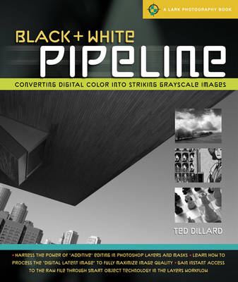 Black and White Pipeline: Converting Digital Color into Striking Grayscale Images