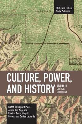 Culture, Power, And History: Studies in Critical Social Sciences, Volume 4