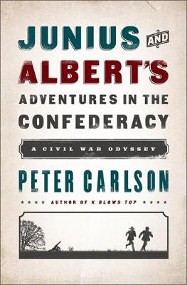 Julius and Albert's Adventures in the Confederacy: A Civil War Odyssey