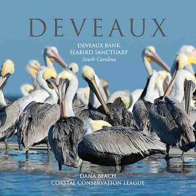 Deveaux: Deveaux Bank Seabird Sanctuary, South Carolina