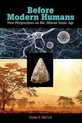 Before Modern Humans: New Perspectives on the African Stone Age