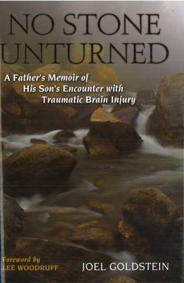 No Stone Unturned: A Father's Memoir of His Son's Encounter with Traumatic Brain Injury