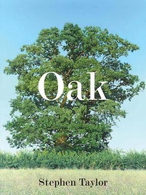 Oak One Tree, Three Years, Fifty Paintings