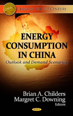 Energy Consumption in China: Outlook & Demand Scenarios