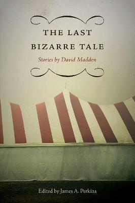 The Last Bizarre Tale: Stories by David Madden