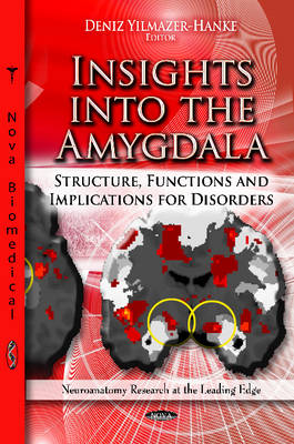 Insights into the Amygdala: Structure, Functions & Implications for Disorders