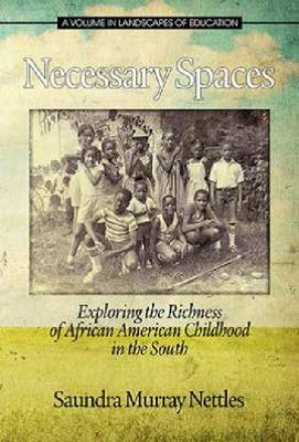 Necessary Spaces: Exploring the Richness of African American Childhood in the South