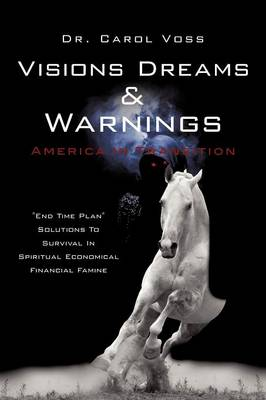 Visions Dreams and Warnings America in Transition