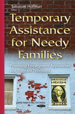 "temporary assistance for needy families essay Tanf is ""a block grant plan to assist travel receivers into work and turn public assistance into a plan of impermanent aid "" ( ""temporary aid for needy families ( tanf ) "" )  in 2012."